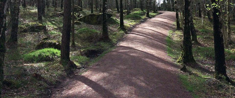 stig-i-skog